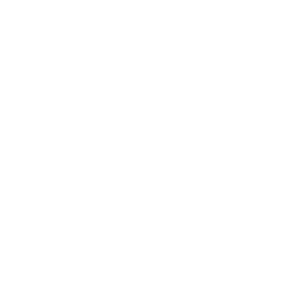 Bau Icon